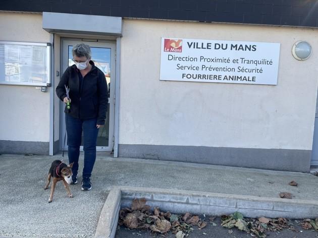 Après son hospitalisation, une maison de retraite se mobilise pour réunir un octogénaire et son chien