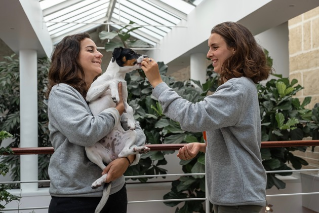 Des insectes dans les croquettes pour chiens et chats : la nourriture du futur de nos compagnons à quatre pattes ?