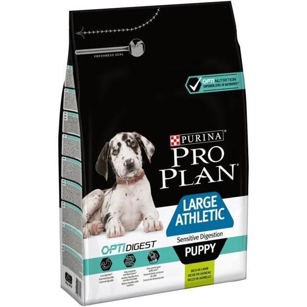 Bon plan pour chien : Les croquettes Purina moins cher grâce à Cdiscount à volonté
