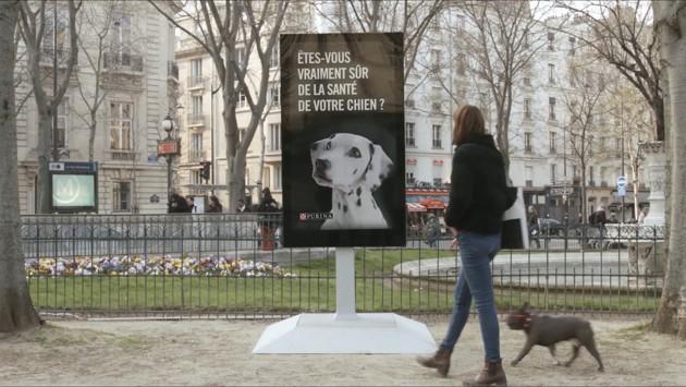 Street-Vet : un panneau d'affichage qui détecte les maladies canines !