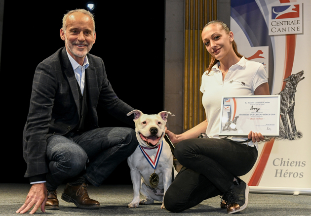 https://static.wamiz.fr/images/contrib/content/Trophees%20des%20Chiens%20Heros%202019%20-%20G.Rolle%20-%20ADOCOM%20%286%29-content-5cb9cf3a9881a.jpg