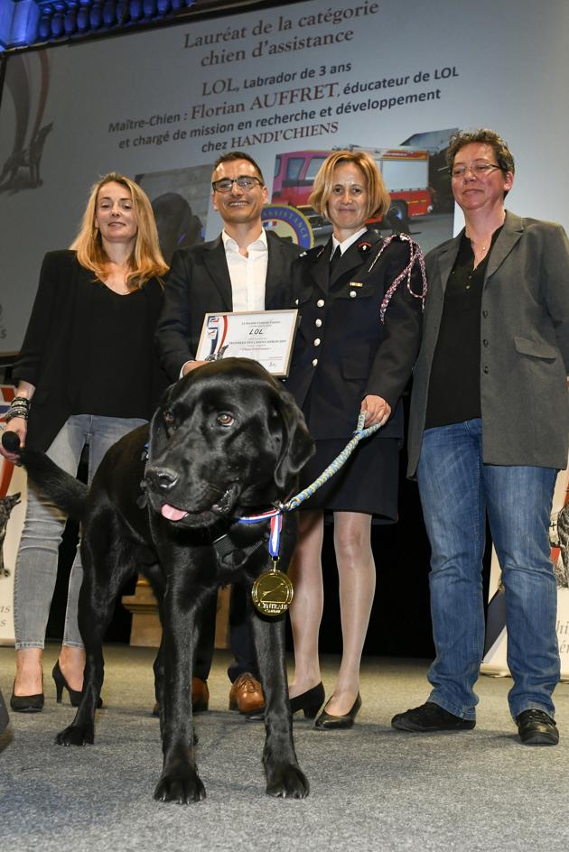 Trophées des Chiens Héros 2019 : hommage à des chiens extraordinaires !