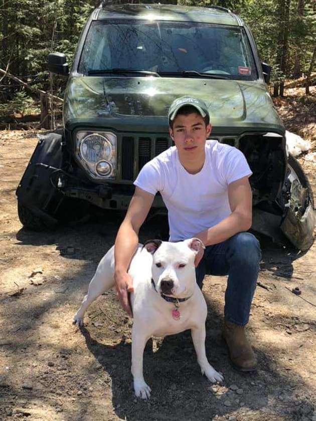 pitbull et son humain près d'une voiture