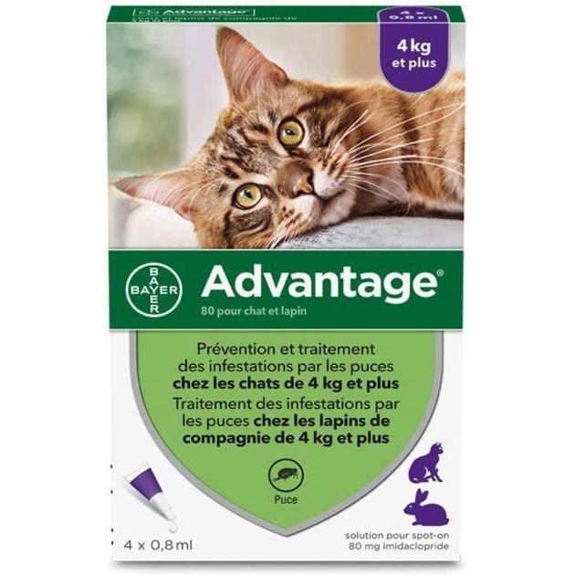 50% de réduction : La pipette anti-puces pour chat de 4kg et plus Advantage