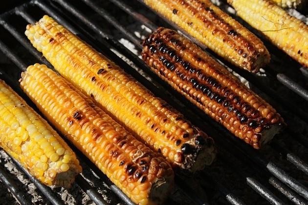 Peut-on donner à son chien des aliments cuits au barbecue ?