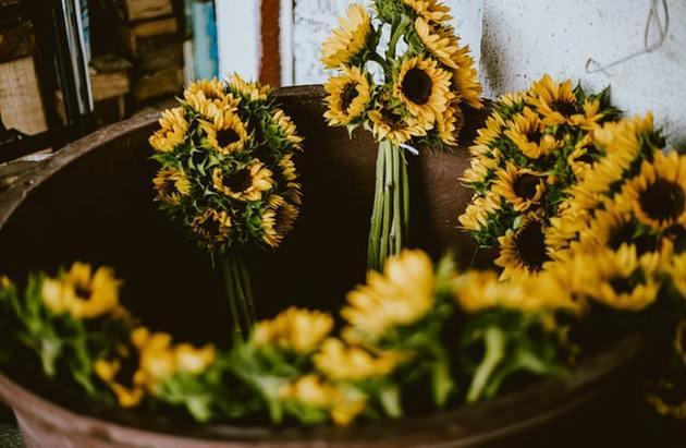 bouquets de tournesols