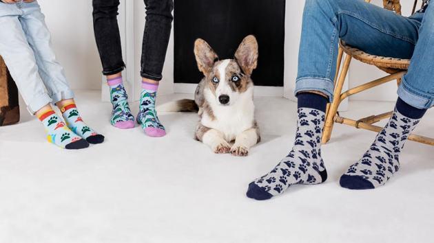2 belles idées de cadeaux pour un Noël solidaire en faveur de la SPA et des animaux