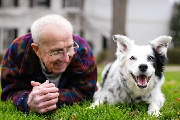 La chienne la plus intelligente du monde qui connaissait plus de 1000 mots est décédée