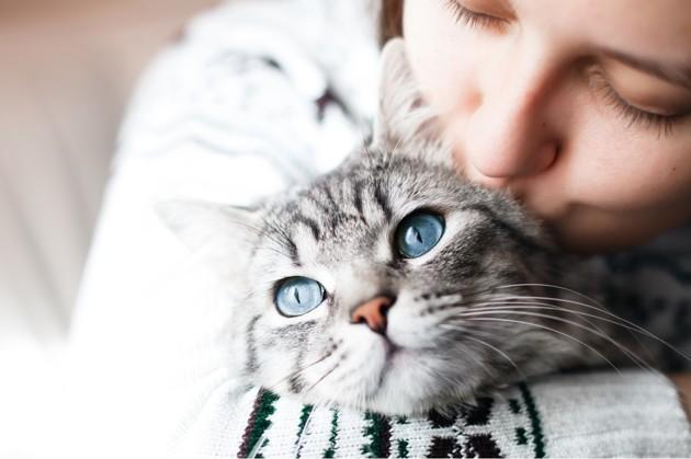 câlin avec un chat