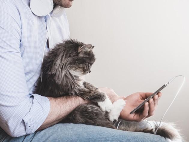 Podcasts sur les chiens et les chats : notre sélection à écouter sans modération !
