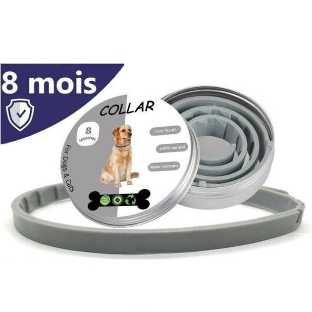 collier anti-puce et anti-tique pour chien 100 % naturel