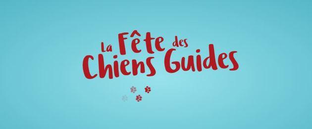 Fête des Chiens Guides d'Aveugles 2020 : découvrez l'incroyable univers des chiens guides depuis chez vous !
