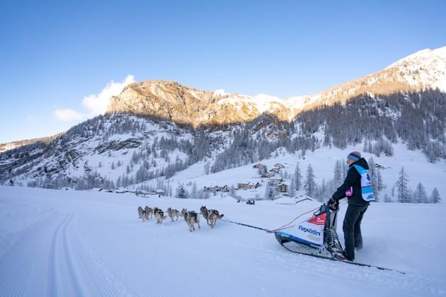 La Grande Odyssée Savoie Mont Blanc 2021 : suivez la célèbre course de chien de traineau depuis chez vous