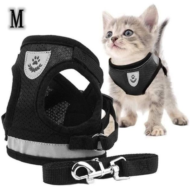 53% de réduction : le harnais pour chat Kenlumo