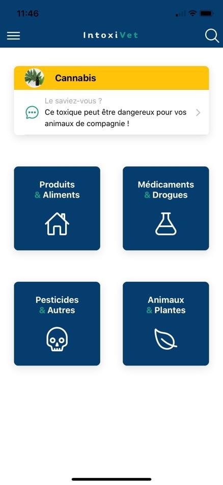 IntoxiVet : l'application pour protéger votre chien et votre chat des intoxications (aliments, médicaments, plantes...)