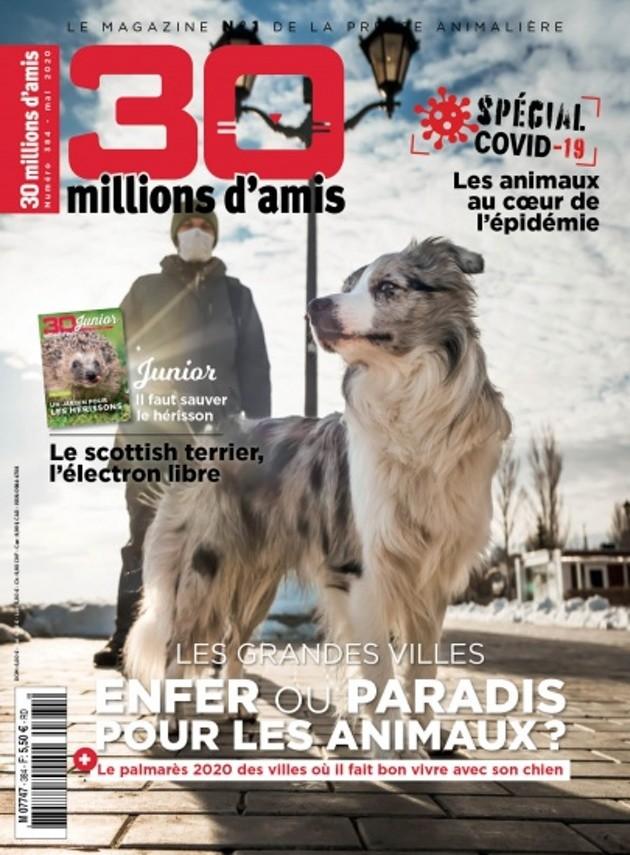 Montpellier élue une nouvelle fois ville la plus dog-friendly de France