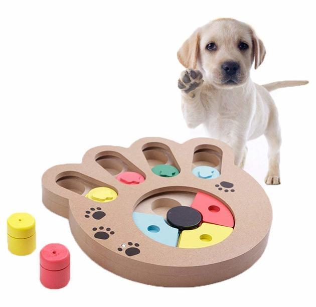 jeu intelligence mémoire chien
