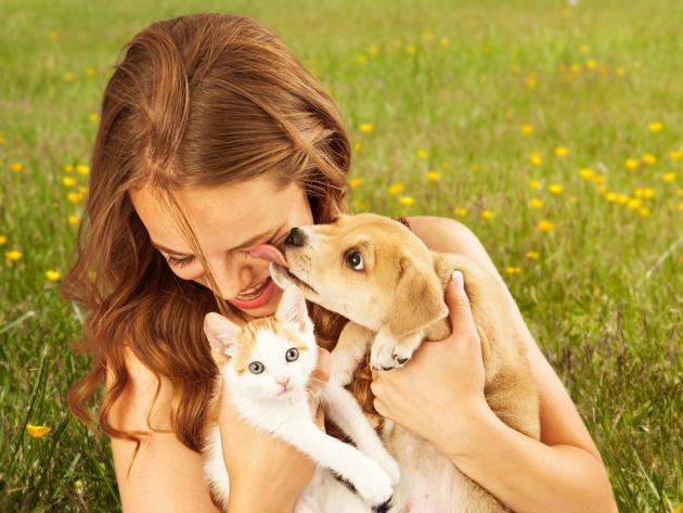 Selon cette étude, les chiens aiment leurs maîtres 5 fois plus que les chats !