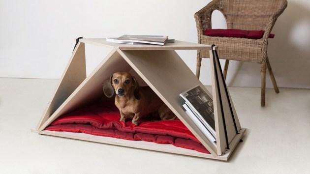 table basse pour chien