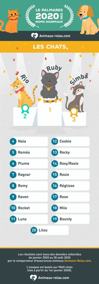 Voici les 20 noms de chiens et chats les plus donnés en France en 2020 !