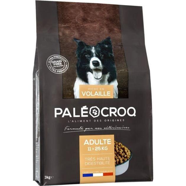 Notre sélection de croquettes pour chiens adultes mediums à moins de 50 euros