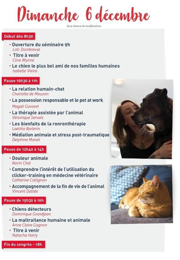 Pet Revolution 2020 : un séminaire 100% digital dédié aux animaux de compagnie