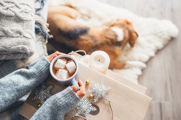 chocolat chaud Noël chien