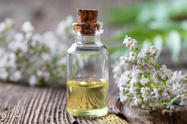 huile essentielle de valériane