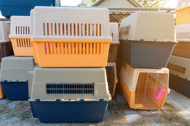 Cages de transport pour animaux