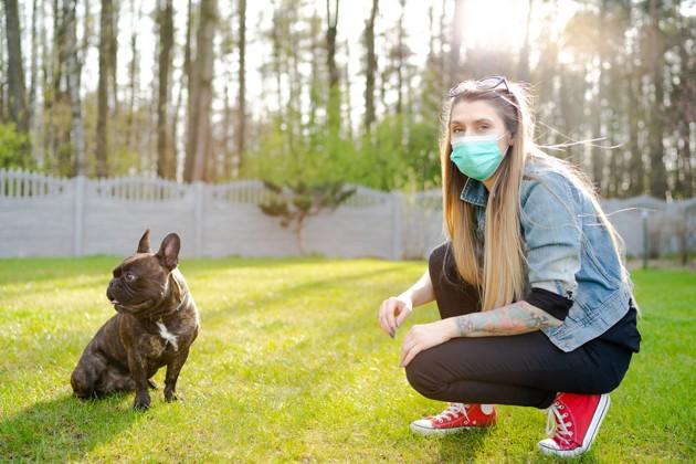 Mon chien a peur des personnes masquées : comment faire ?