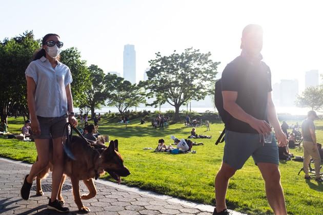 Parcs, plages, restaurants, vacances… : ce qui change pour les propriétaires de chiens et de chats dans la 2e phase du déconfinement