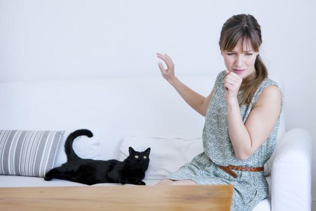 Quels risques en cas d'allergie au chat ?