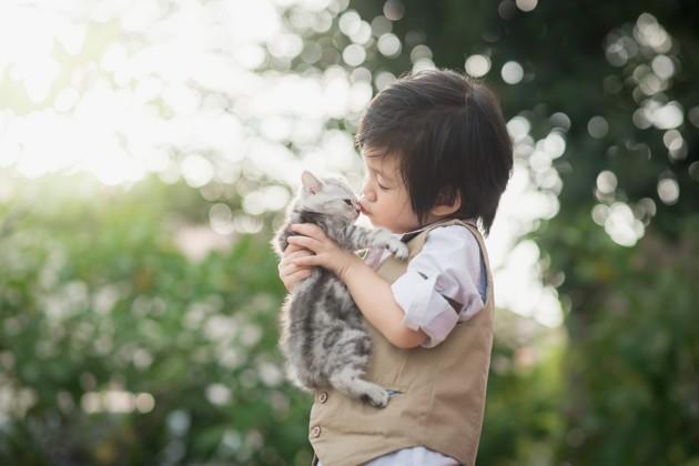 95% des Français se déclarent sensibles à la notion de bien-être animal