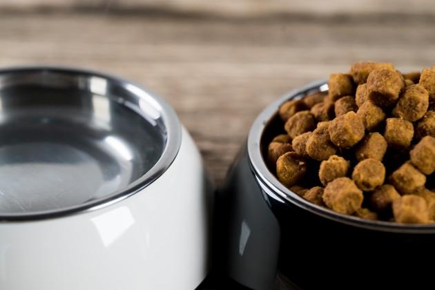 Sans céréales, insectes, bio, superaliments… : découvrez les tendances du moment dans les gamelles des chiens et des chats !