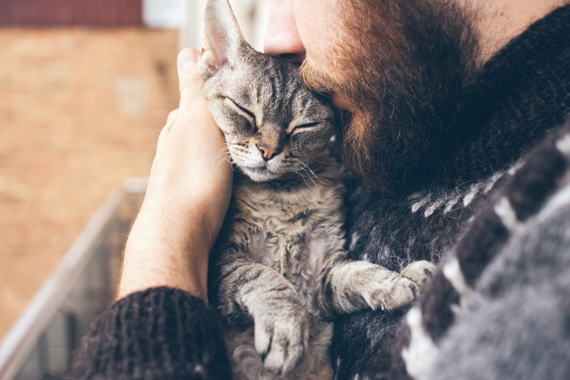 10 signes qui prouvent que votre chat est heureux