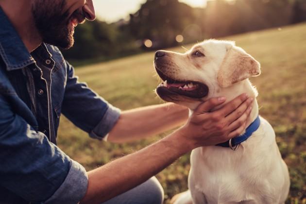 Les chiens et les bébés ont la même technique pour nous attendrir : leur regard