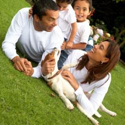 Famille d'accueil - Faire garder son animal chien et chat