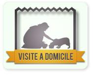 Visite à domicile garde chien et chat