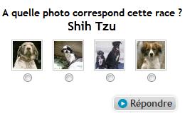 Quizz photos races animaux