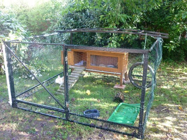 Un enclos ferm et grand pour lapins forum lapin lapin page 2 wamiz - Enclos a lapin ...