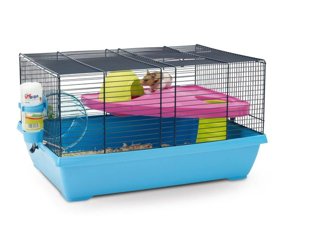 cage hamster syrien forum hamster hamster wamiz. Black Bedroom Furniture Sets. Home Design Ideas