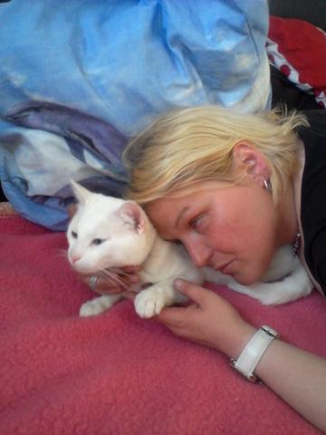 Mon chat g de 15 mois fait ses besoins sur le lit que se passe t il question comprendre - Mon chaton fait pipi sur mon lit ...