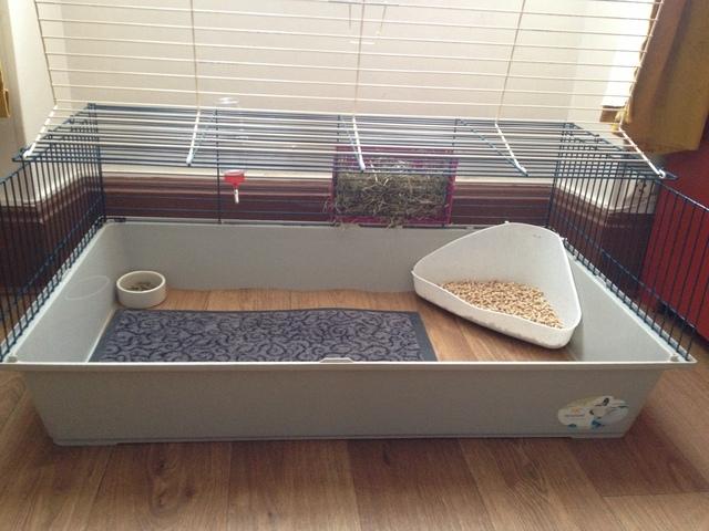 am nagement cage lapin forum lapin lapin wamiz. Black Bedroom Furniture Sets. Home Design Ideas
