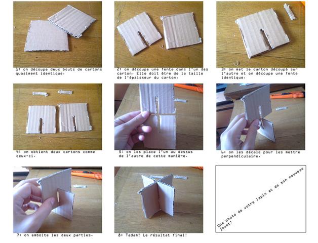 Question jeux et jouets forum lapin lapin wamiz - Jeux pour lapin a fabriquer ...