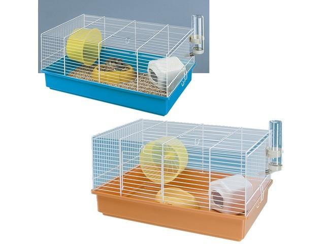 combien co te un hamster question hamster wamiz. Black Bedroom Furniture Sets. Home Design Ideas