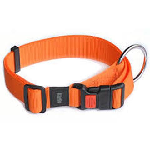 collier pour chien taille