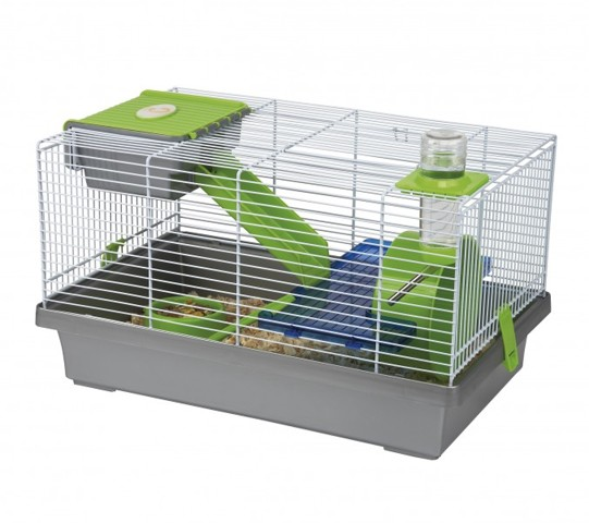 cage hamster nain russe forum hamster hamster wamiz. Black Bedroom Furniture Sets. Home Design Ideas