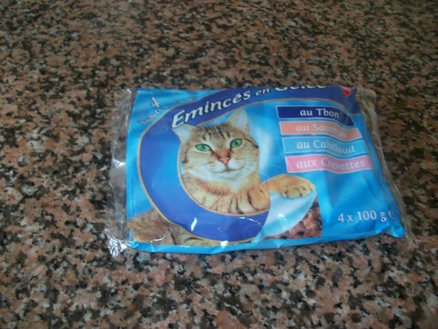 vous donnez quelle p 226 t 233 e 224 votre chat forum chats wamiz