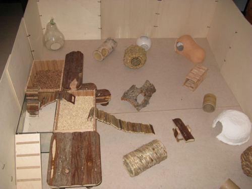 rongeurs hamster  forum cree un parc pour