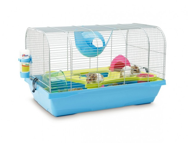 rongeurs hamster  forum quelle cage choisir